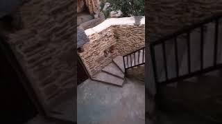 Video del alojamiento Casa Rural La Tí María la Viuda