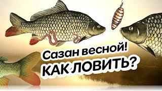 Секреты ловли рыбы в мае 2020
