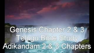 Genesis Chapter 2 & 3 - Telugu Bible Study