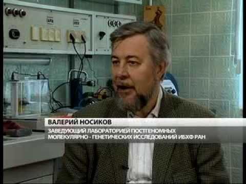 Установление родства по ДНК в ИБХФ РАН