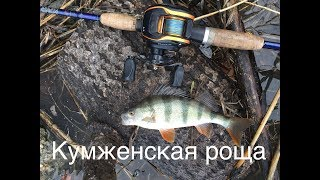 Рыбалка в рогожкино ростовской области на отводной поводок