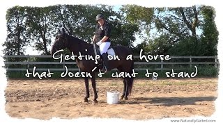 How to get on a horse that doesn't want to stand