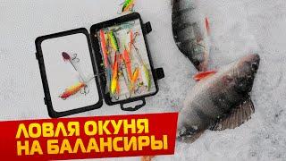 Ловля окуня зимой на московском море