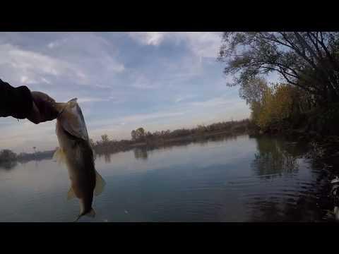 Pesca in alto