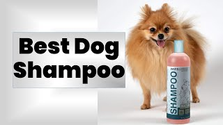 10 Best Dog Shampoo 2020 Review