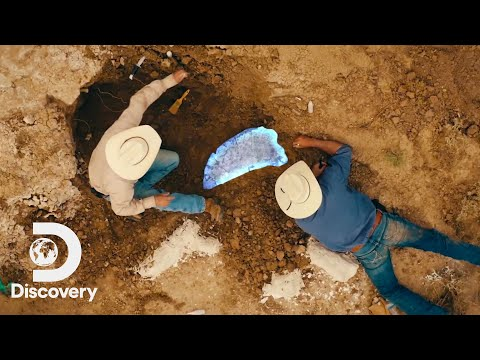 The Cowboys Hunting for Dinosaur Fossils | Dino Hunters