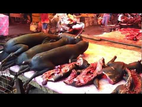 Video Tomohon Traditional Market - Pasar Tomohon