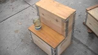 Eco Bee Box Utah Hive - Ideal For Honey Comb Production