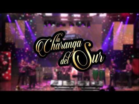 Son de la Loma - La Charanga del Sur