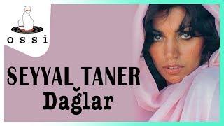 Seyyal Taner / Dağlar