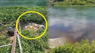 Limbah Cair Berwarna Hitam Mengubah Warna Sungai Asahan