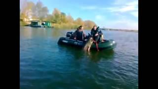 Приколы на рыбалке ! РЖАКА 2016