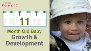 11 Month Old Baby : Development, Activities & Care Tips