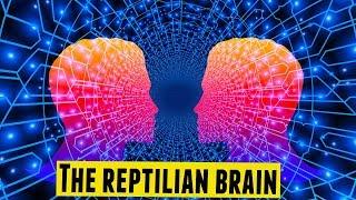 The Reptilian Brain