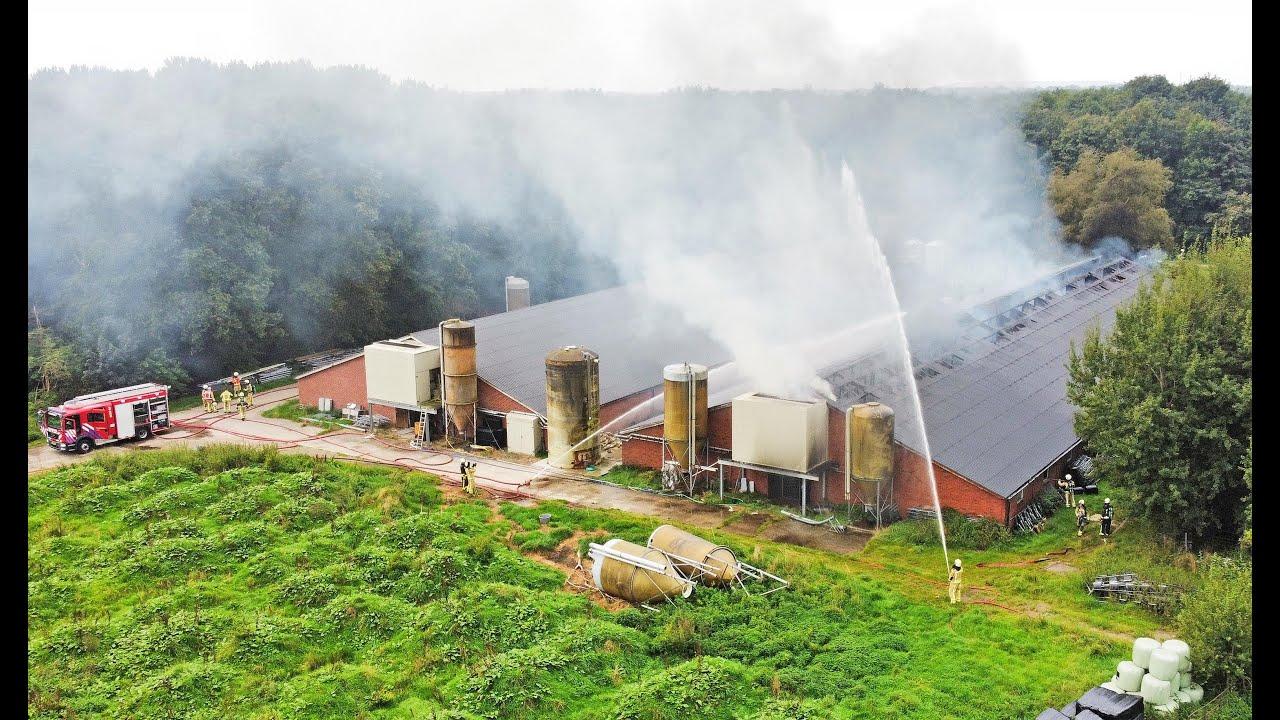 Grote brand in varkensschuur in Mantinge