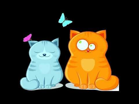 Кальцивироз у кошек - правда от ветклиники