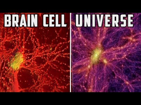 Can You Prove REALITY Is REAL?