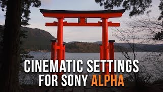 BEST Video Settings for Sony a7III a7RIII a6300 a6400 a6500 | FREE Cinematic Tutorial