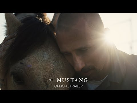 The Mustang (Trailer)