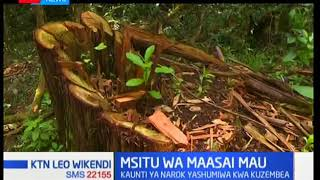 Shirika la huduma ya misitu yatangaza mpango ya kufurisha zaidi ya mia mbili kutoka msitu wa Maasai