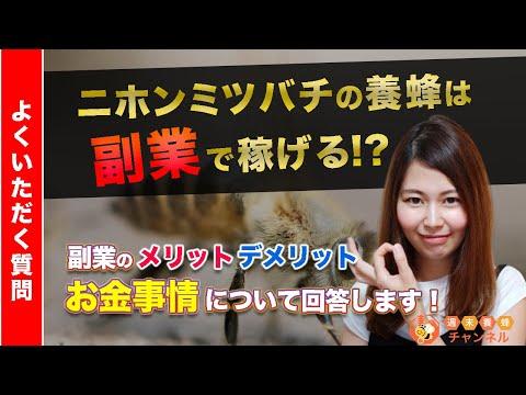 , title : '【Q&A】ニホンミツバチ養蜂のお金事情!稼げるの?副業にぴったり?