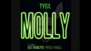 Molly - Tyga Ft. Wiz Khalifa & Mally Mall