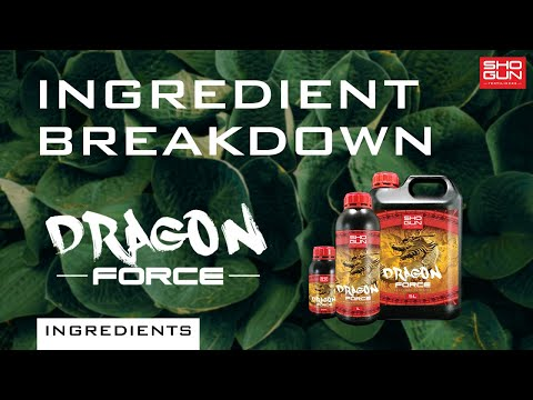 Ingredients Breakdown SHOGUN Dragon Force - A Finishing And Ripening Additive