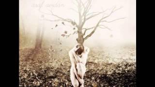 Asaf Avidan | A Ghost Before The Wall - VON RIBERA REMIX