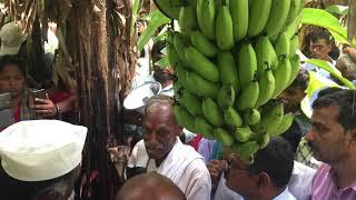 ZBNF Banana Gardening Teach By  Shri Subhash Palekar At Manduai , Pune