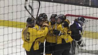 NWHL Highlights: Minnesota at Boston 01.12.19