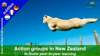 Action groups to foster peer to peer learning – Example of Red Meat Profit Partnership, New Zealand