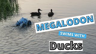 MEGALODON STORM RC Waterproof Monster Truck in the Lake