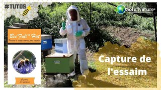 Bee'full hut : comment capturer l'essaim ?