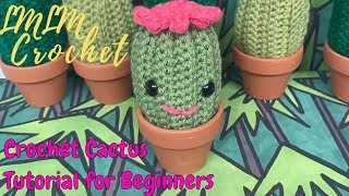 How to Crochet a Cactus for Beginners