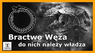 Bractwo Węża – do nich należy władza