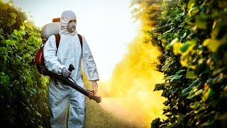 Trump's EPA Just Approved A Pesticide That Damages Children's Brains - The Ring Of Fire