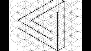The Impossible Triangle - Computerised Design (Flower Of Life)