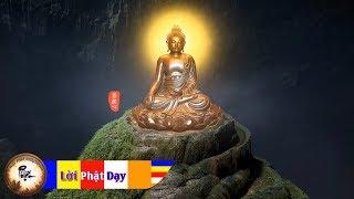 108 Câu Hỏi Phật Pháp đáng Suy Ngẫm   Đêm Khuya Trằn Trọc Khó Ngủ Nghe Tĩnh Tâm Ngủ Ngon
