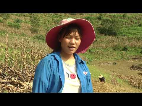Trồng rau trái vụ giúp nhiều hộ dân xã Nàn Sín thoát nghèo