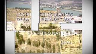 Video del alojamiento Villa La Barrosa