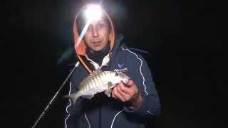 Italian Fishing TV – Veret – Surfcasting ai grufolatori