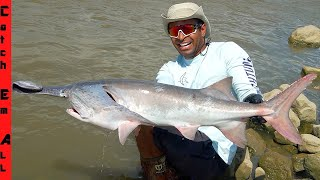 MONSTER Long-Nose PADDLEFISH CATCH and COOK! **PART 1**