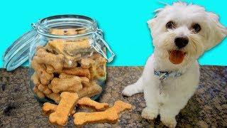 PUPPY BAKES TASTY DOG TREATS!!🍴