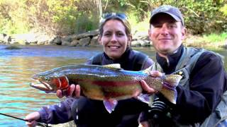 Putah Creek Fly Fishing - Northern CA Trophy Trout Fishery