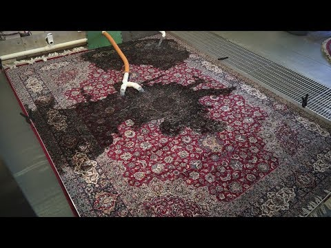 How long will it take to clean an oriental carpet?-#PetPeePee