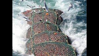 ТОП 3 НЕВЕРОЯТНЫЕ ПРОМЫСЛОВЫЕ РЫБАЛКИ ШТОРМ УРАГАН ВЕТЕР ШОК Вот это рыбалка 2018 Ты не поверишь