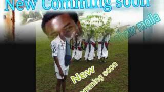 New Ethiopia Music 2013 Gashaw Molla  .wmv