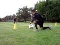 EntraÎnement Football Spécifique Gardiens de but - US Orléans - U17 DH (...