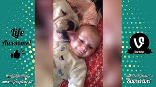 TRY NOT TO LAUGH or GRIN   Funny Animals Compilation 2018   Funniest Animals Videos Life are Awesome