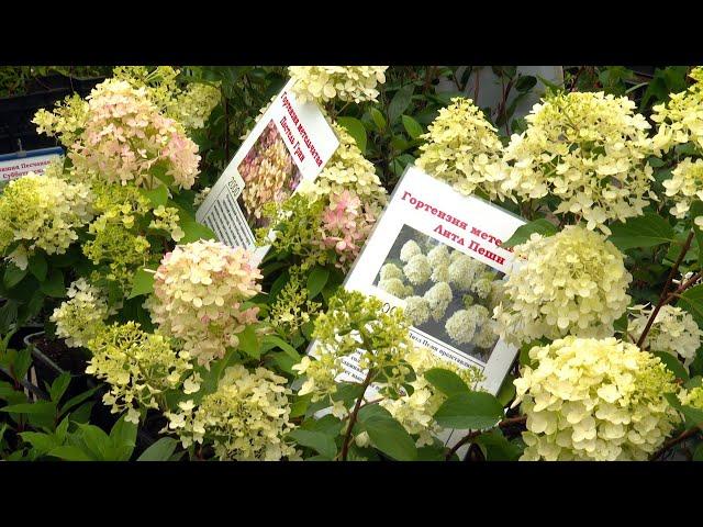Ангарчан приглашают на выставку «Сады Сибири»